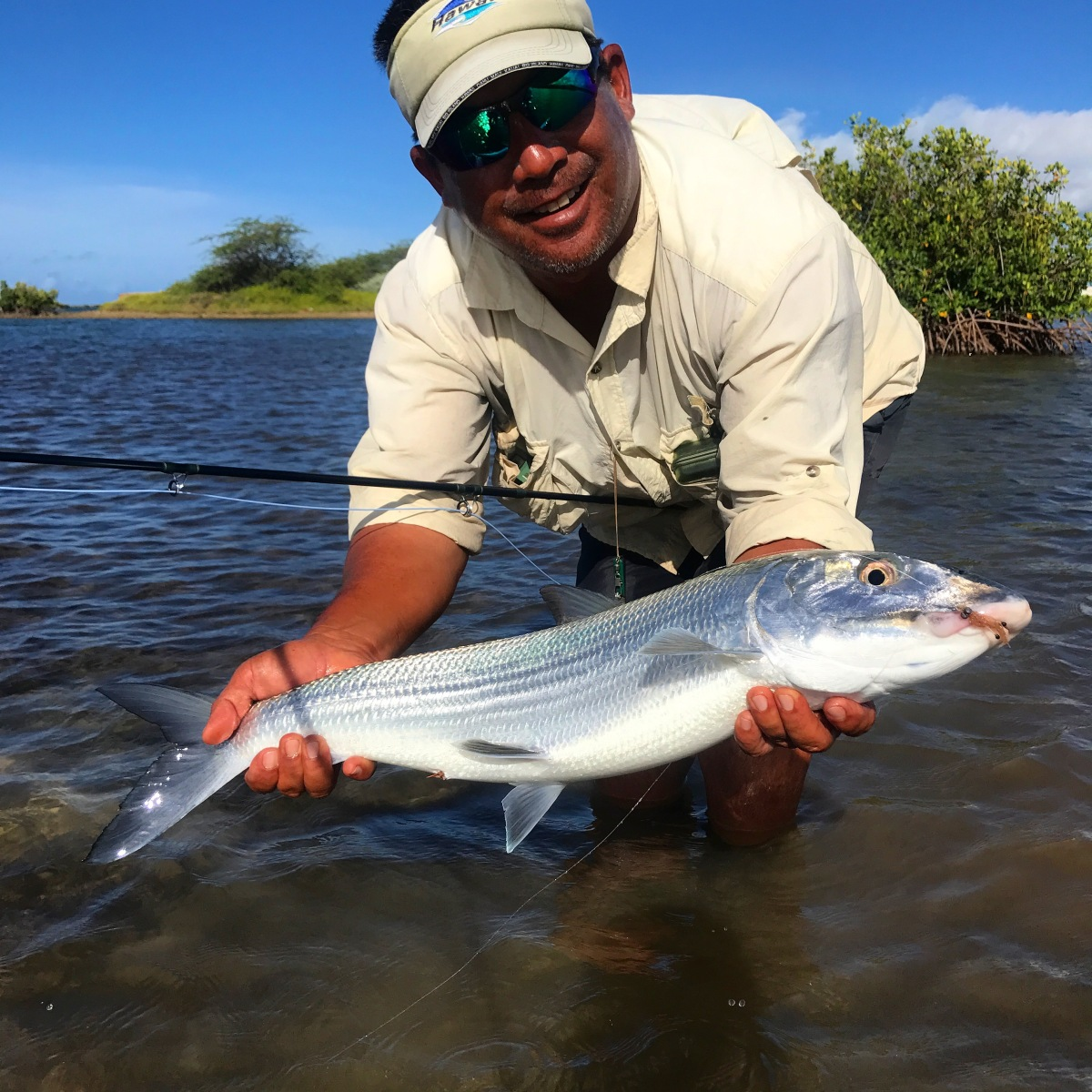 Fly fishing guides and getting started fly fishing hawaii for Hawaii fish guide